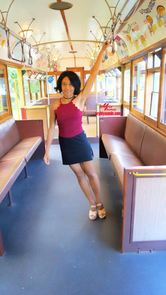 Pretty Zahra Soltanian (Wyld Yasmin) Train Ride